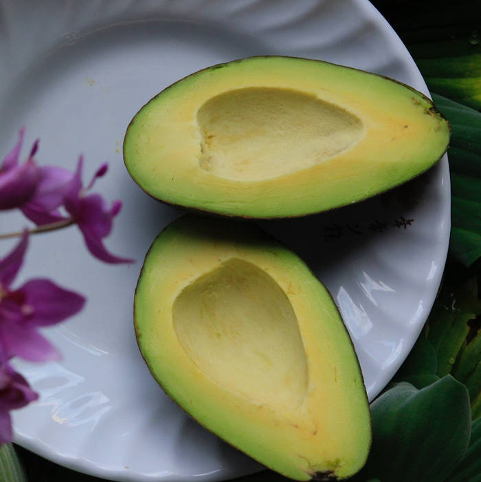 Avocado is widely regarded as one of those Superfoods. But America stopped talking about Superfoods. They haven't stopped talking about CBD though. With the developing research for different cannabinoids within the spectrum of CBDs, there's new stuff to talk about every week. Be sure you've got a stock of full spectrum CBD oil around the house. Synchronicity sells finely crafted all natural hemp products.