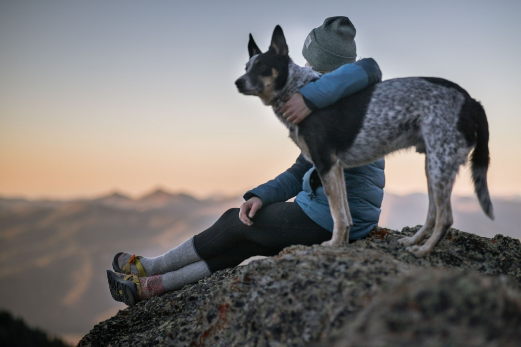 person on a mountain holding black and white dog-person-holding-black-and-white-dog