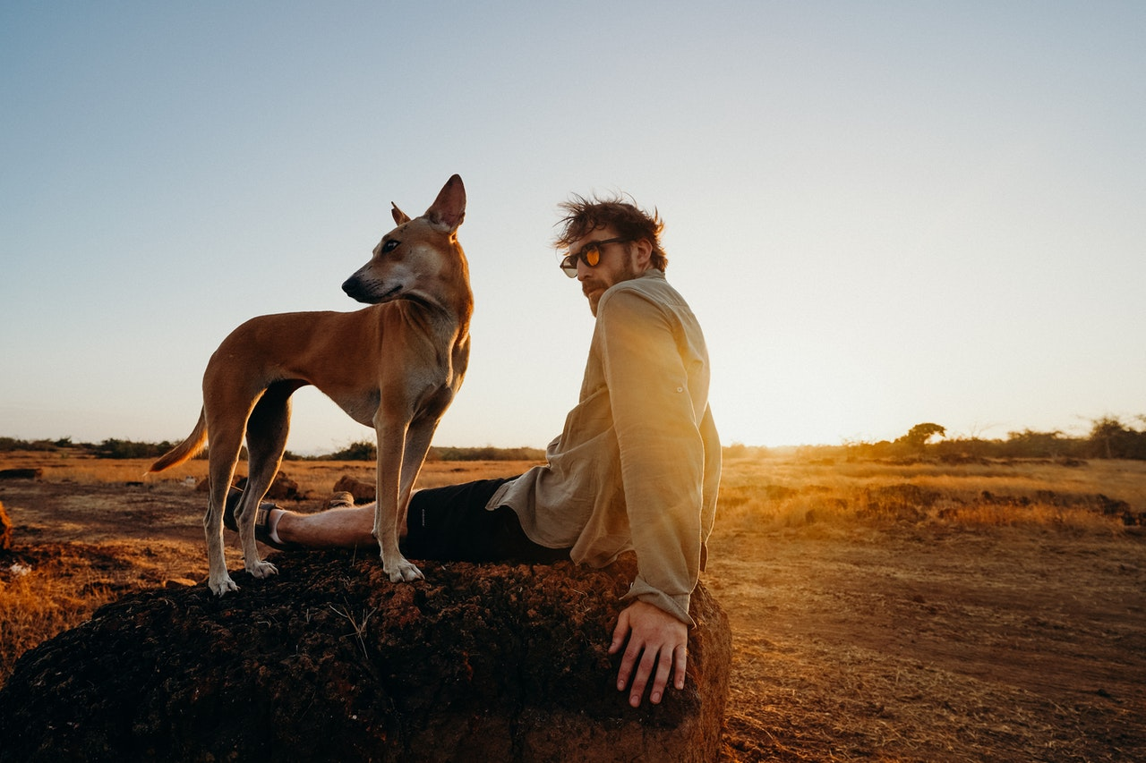 photo-of-man-sitting-on-rock-with-his-brown-dog