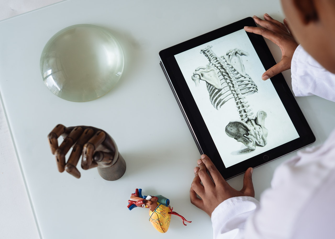 unrecognizable-african-american-scientist-studying-anatomy-with-tablet