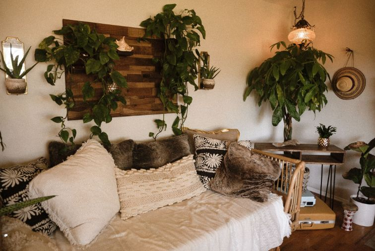 Cozy Room With Couch And Plants