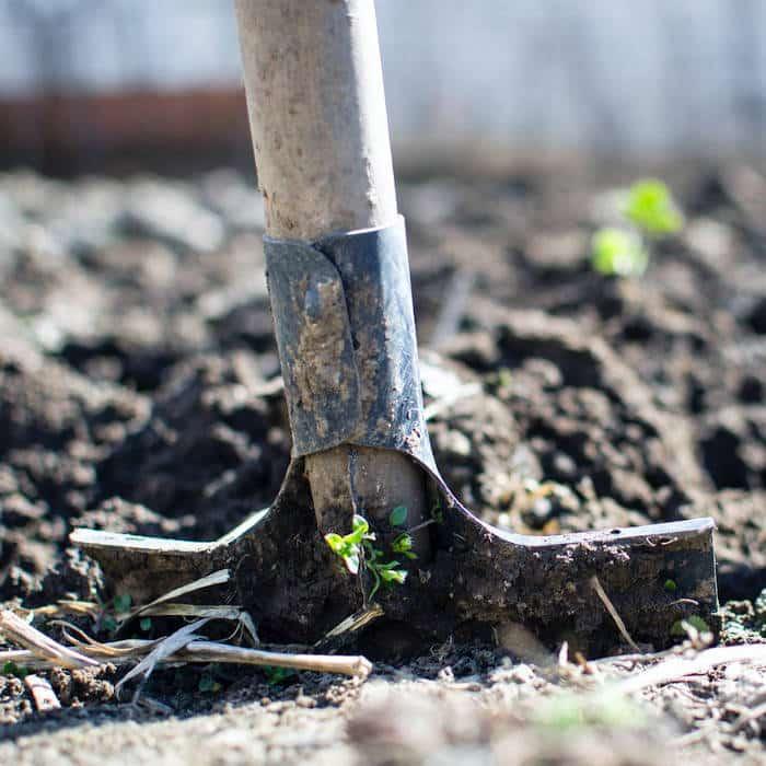 Equipment for growing hemp. what you need to grow hemp. outdoor hemp grow tips